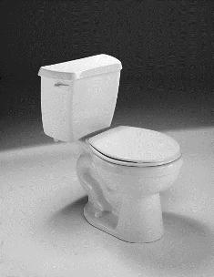 Plano Toilet Repair Toilet Installation Toilet